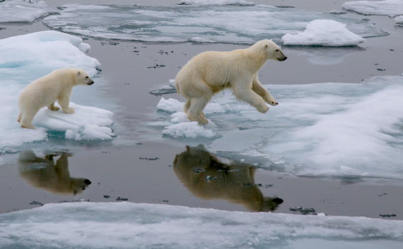 climate_change-810x500.jpg